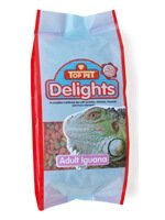 Delights for Iguanas